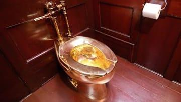 سرقة المرحاض الذهبي الأشهر من قصر بلينهايم