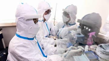 هل يمكن للأطباء استخدام بلازما الدم لعلاج فيروس كورونا؟