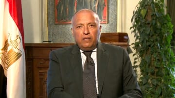 شكري لـCNN: نرى مدى ضرر تدخلات قطر في مصر وسوريا وليبيا
