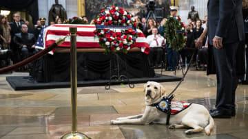 """الكلب """"سولي"""" يخطف الأنظار خلال وداع بوش الأب"""