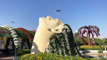 حديقة تحوي 150 مليون وردة وسط الصحراء في دبي