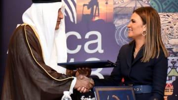 الكويت تدعم تنمية سيناء.. وهذه هي المشاريع