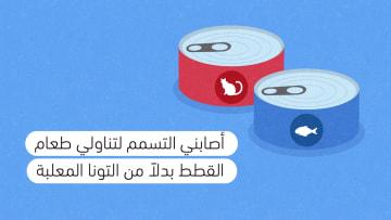 أبو هشيمة :عملت في أصعب الظروف بعد الثورة وكسبت الرهان (3)