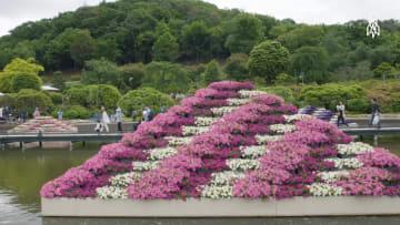 هل ترغب بجولة في هذه الحديقة الخيالية في اليابان؟