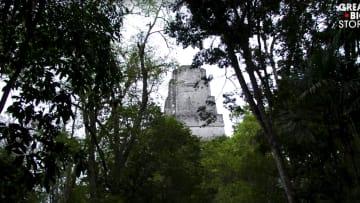 بقايا وهياكل في أعماق الغابات.. هنا ازدهرت حضارة المايا