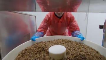 تناول الحشرات كطعام.. إليك ما تسعى له هذه الشركة