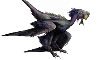اكتشاف نوع جديد لديناصور مكسو بالريش في الصين