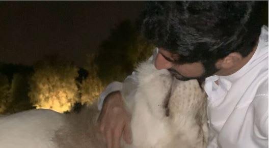 """اسمه """"موتشي"""".. هل هذا الأسد هو الحيوان الأليف الجديد لولي عهد دبي؟"""