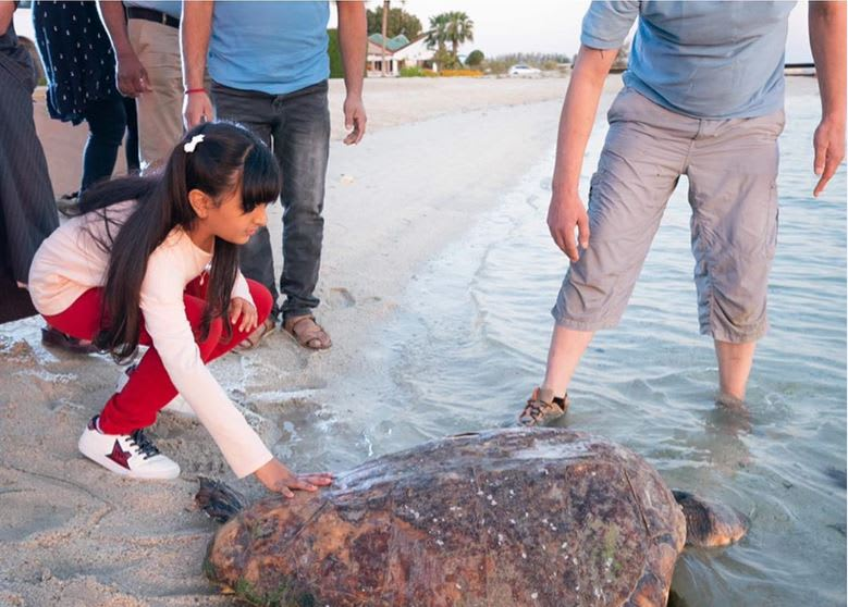 """حفيدة حاكم دبي تُطلق هذه السلحفاة """"النادرة"""" إلى البحر مجدداً"""