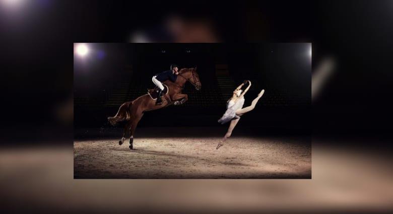 بين الفارس وراقصة الباليه..ألف حصان وحصان