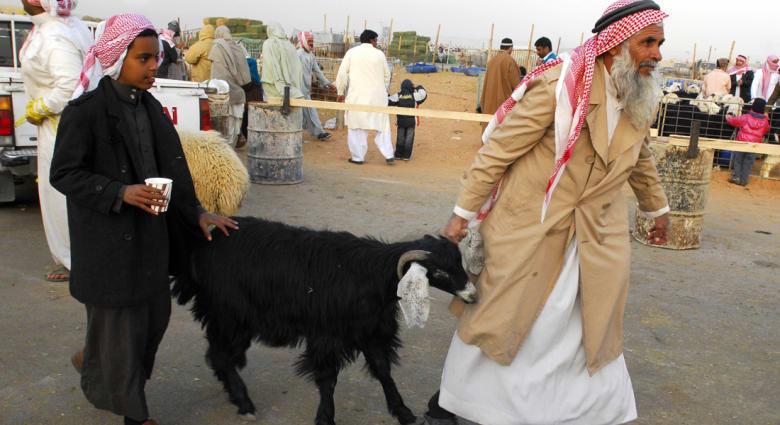 وزير استرالي: نريد من السعوديين أكل خرفاننا.. ولا نرغب بالإساءة لموطن الإسلام