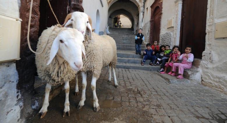 """حملة جزائرية لمقاطعة منتجات غربية: وسم """"حلال"""" ليس كافيا لطمأنة المستهلكين"""