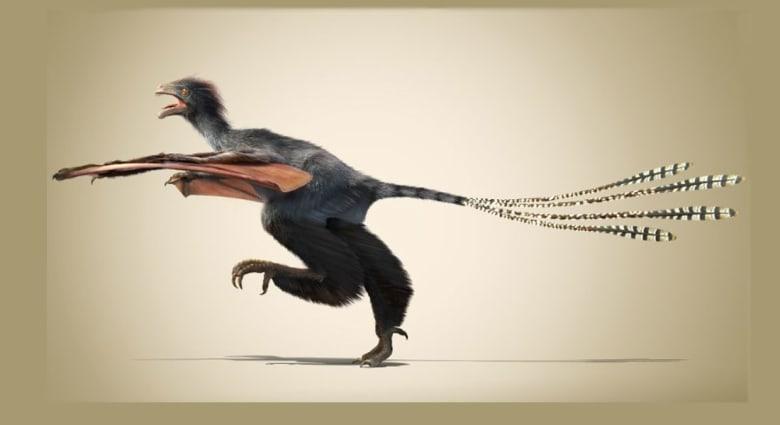 علماء يكتشفون ديناصوراً غريباً بأجنحة وطواط