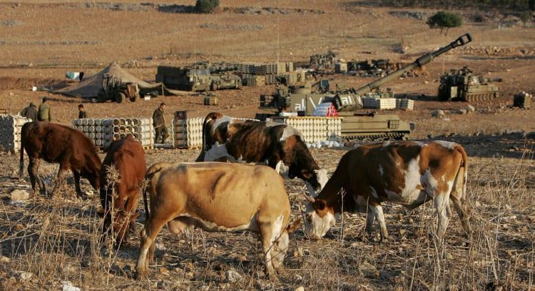 """اتهامات لبنانية لدورية إسرائيلية بسرقة 4 رؤوس ماشية من """"كفر شوبا"""""""