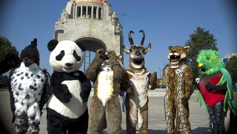 تحذير عالمي من الانقراض الجماعي السادس للحياة البرية بحلول 2020