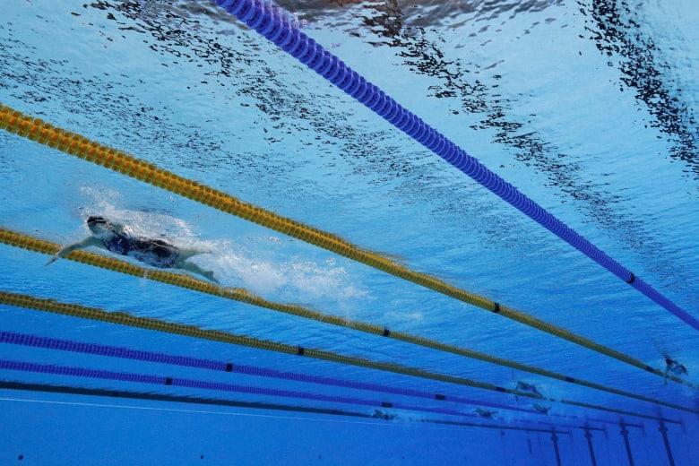المحكمة الأوروبية لحقوق الإنسان تقضي بإلزام فتيات مسلمات تعلم السباحة مع الصبيان