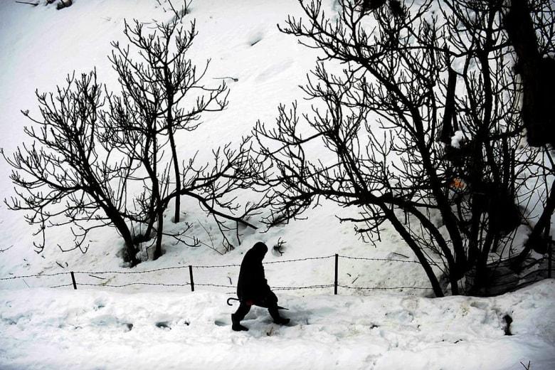 تهاطل الثلوج في تونس.. طرق مقطوعة وسكان محاصرون وآخرون يبيتون في العراء