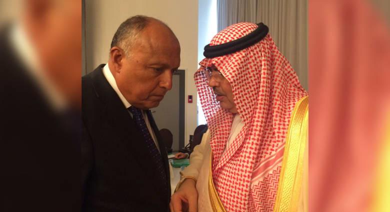 مصر والسعودية تؤكدان استمرار تنسيق المواقف بشأن قطر