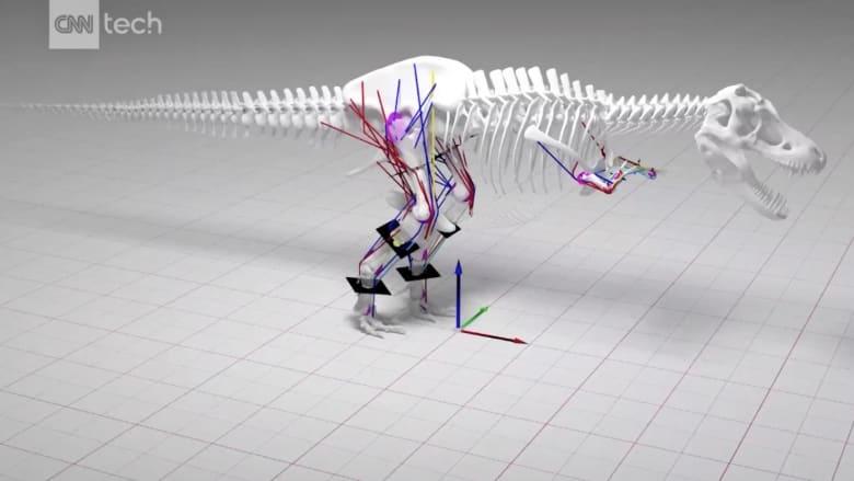 شاهد نموذج المحاكاة.. التيرانوصور العملاق لم يكن قادرا على الركض