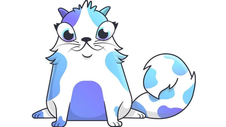 قطة رقمية يبلغ سعرها 110,707 دولارات.. هل تشتريها؟