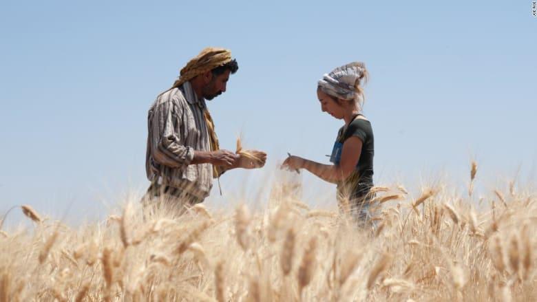 اكتشاف بقايا خبز مخبوز منذ أكثر من 14 ألف عام في الأردن