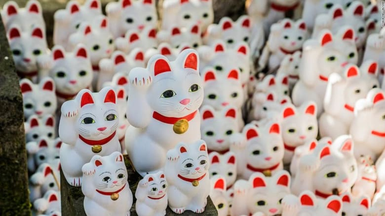 """معبد """"القطط المحظوظة"""".. هل هذا أغرب معبد بالعالم؟"""