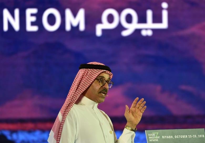 """""""نيوم"""" السعودي يتوقع دخلا بـ100 مليار دولار سنويا"""