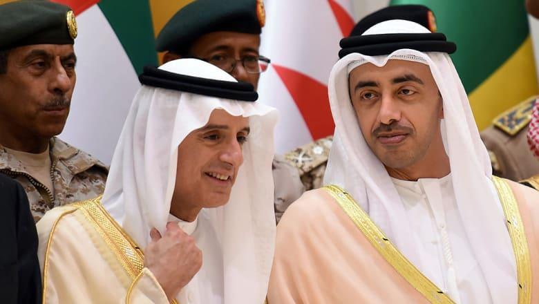 """تداول صورة لوزيري خارجية السعودية والإمارات في """"ياس مول"""""""