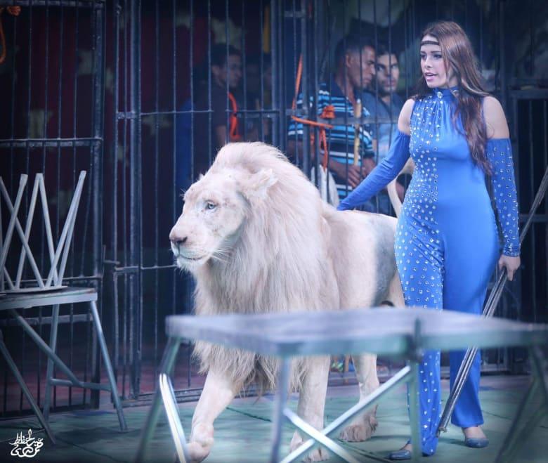 تخاف من الصرصور وصديقها الأسد.. قابل مروضة الحيوانات المفترسة المصرية