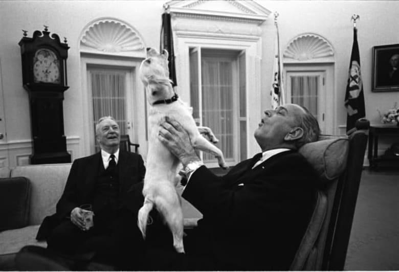 كيف شكل مصورو البيت الأبيض صورة هؤلاء الرؤساء؟