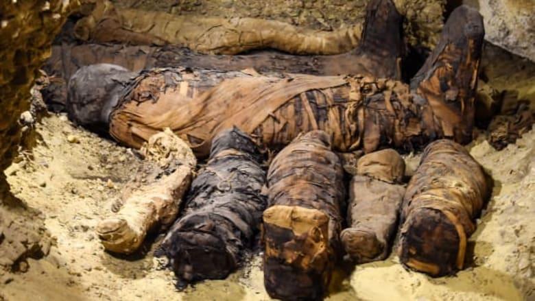 العثور على 40 مومياء في مصر