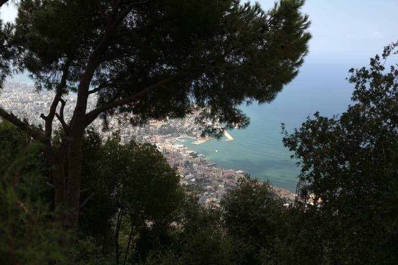 حرائق تجتاح مناطق لبنانية.. ونيشان: مواطنون أصبحوا نازحين