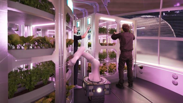 هل هذه الطريقة التي سنعيش بها على كوكب المريخ في المستقبل؟