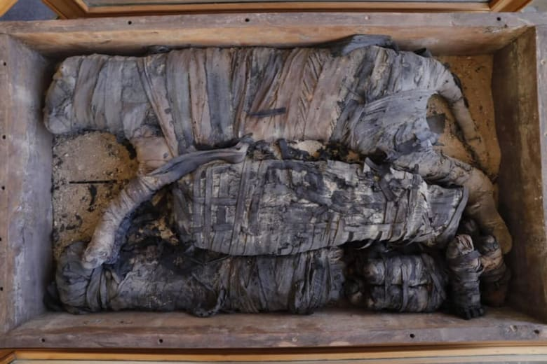 اكتشافات مصر في منطقة سقارة
