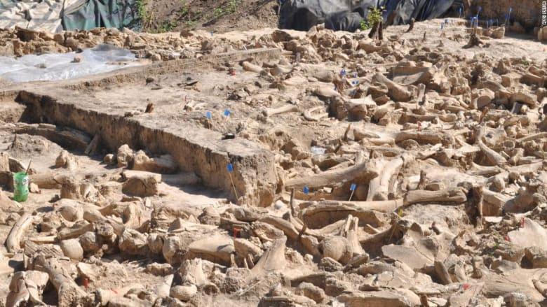 يعود للعصر الجليدي..اكتشاف هيكل غامض من مئات عظام الماموث في روسيا