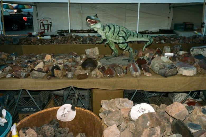 نظرة داخل أكبر معرض للأحجار الكريمة في العالم