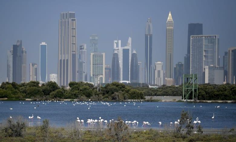 الصحة الإماراتية: وفاة حالتين مصابتين بفيروس كورونا إحداهما من جنسية عربية