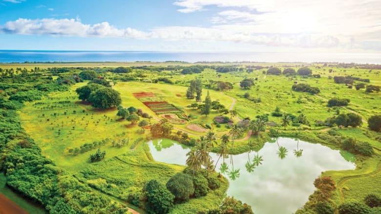 """فندق """"Timbers Kauai"""""""