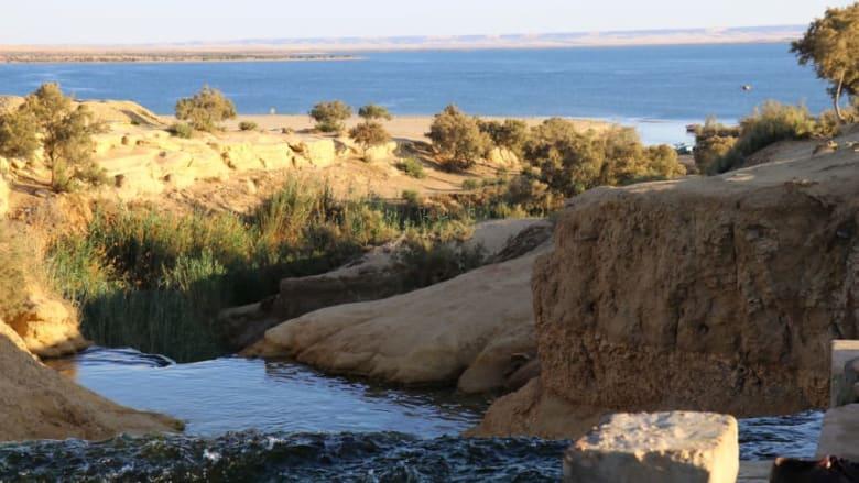 وادي الريان في مصر