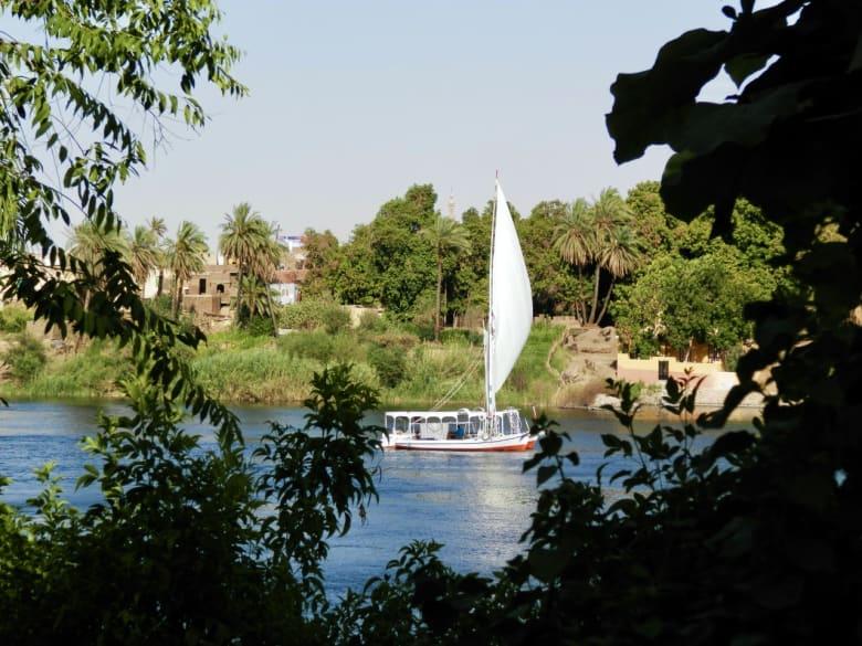 """جزيرة مصرية كاملة تتحول إلى """"جنة"""" وتشهد زيارة أبرز الشخصيات التاريخية"""