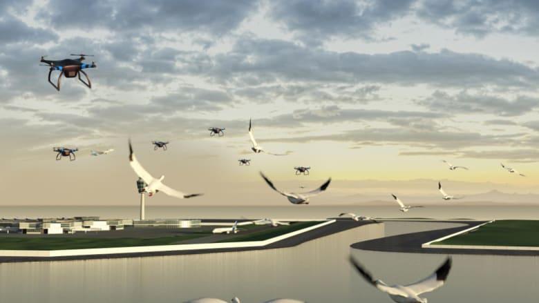 طائرات بلا طيار لإبعاد الطيور وعلب ذكية للتخلص من القمامة..هل هذه أبرز الحيل التكنولوجية في الطائرات