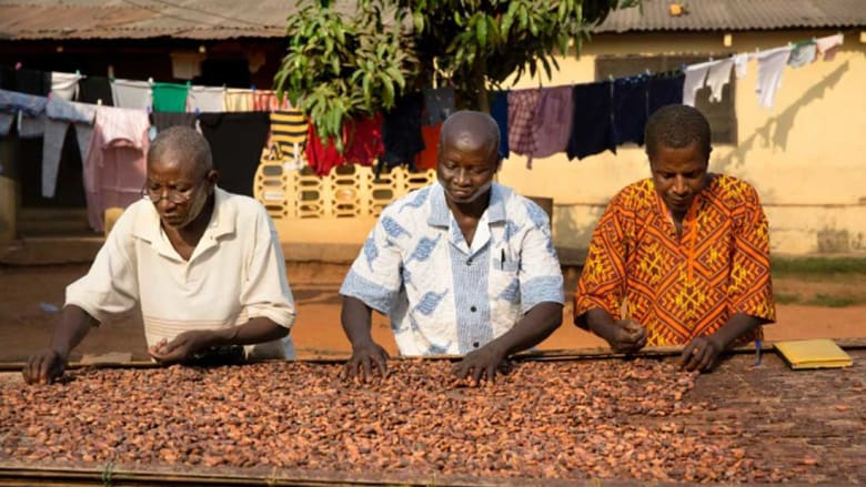 متعة بلا ذنب.. بهذه الشوكولاتة الخالية من العبودية