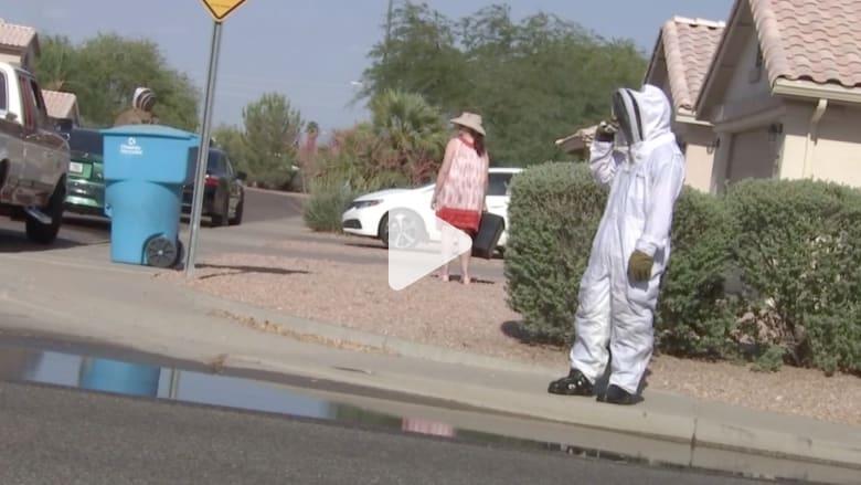 بالفيديو: وفاة شاب بعد ألف لسعة من النحل