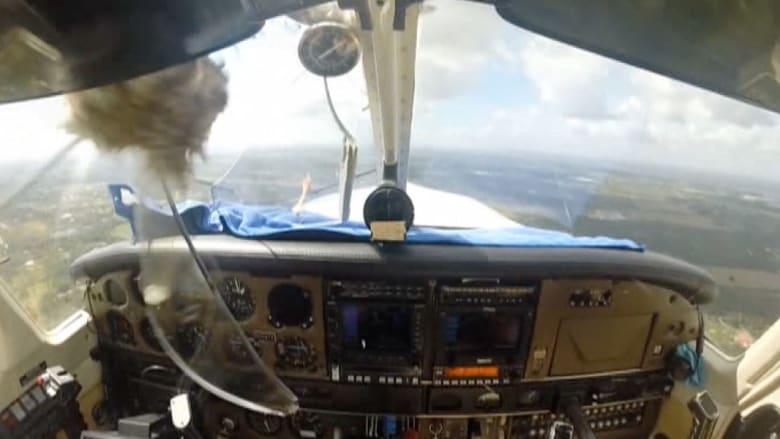 أغرب من الخيال.. طائر يرتطم بطائرة ويكسر زجاجها الأمامي