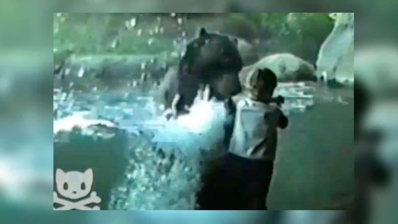دب يلاعب طفلا في حديقة الحيوانات