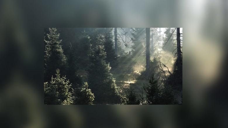 شاهد بالصور.. أغرب المواقع الطبيعية المسكونة بالأشباح