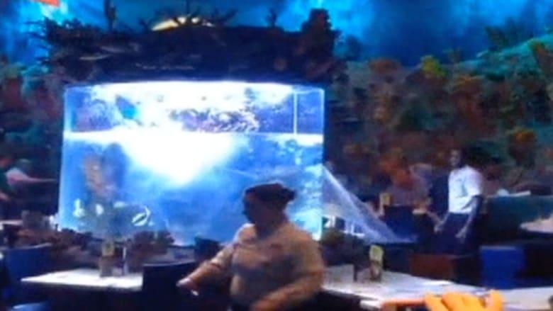 تصدع حوض سمك بمطعم يدفع زبائنه للهروب خارجا