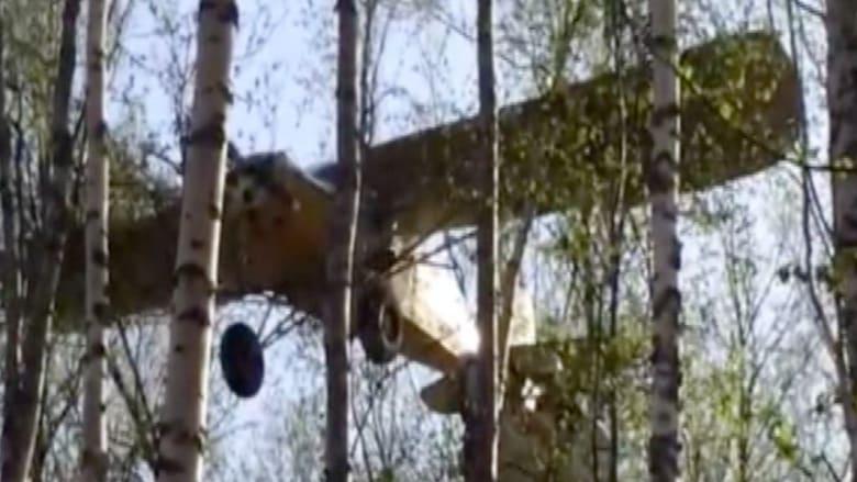 بالفيديو.. طائرة تعشش على شجرة ورافعة للطيار