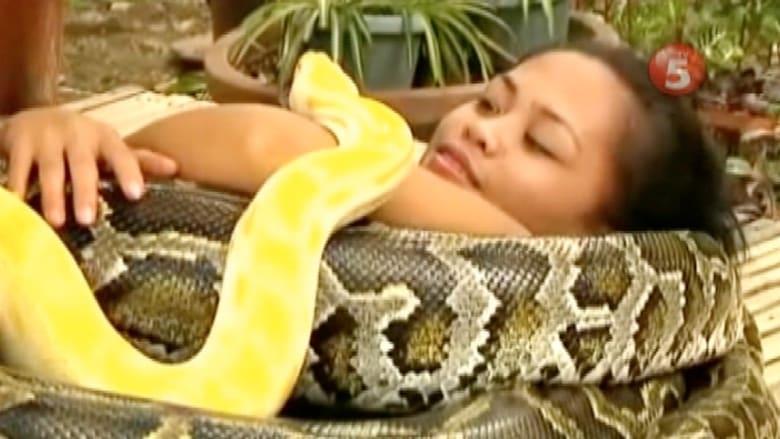 صدق أو لا تصدق.. أفعى تقوم بخدمات التدليك بحديقة في الفلبين