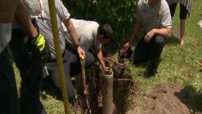 فريق إطفاء في فلوريدا ينقذ جرواً سقط في أنبوب